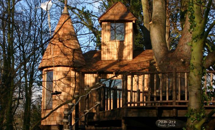 Rumah Pohon Istana