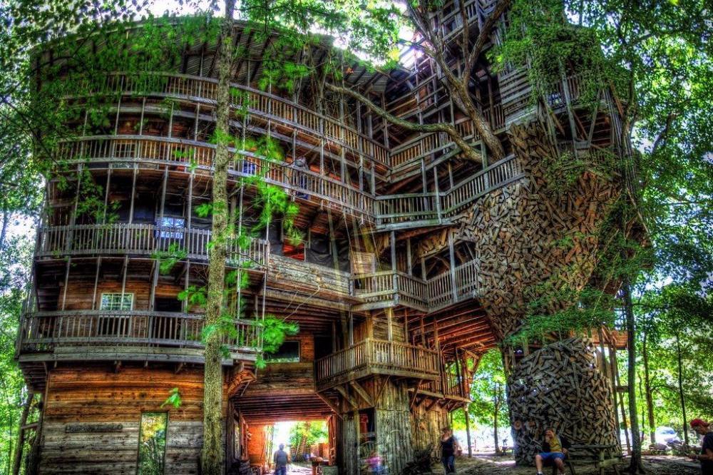 Rumah Pohon Terbesar Dunia