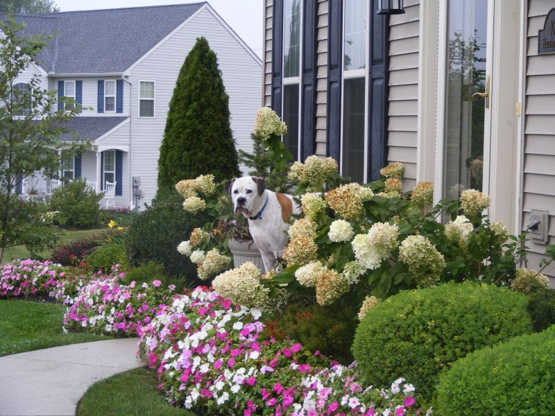15 Inspirasi Taman Depan Rumah Kamu Pasti Suka
