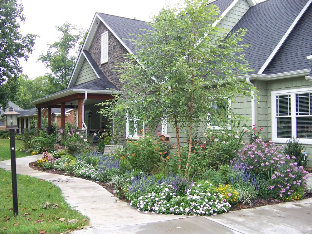 Taman Rumah Minimalis Birch