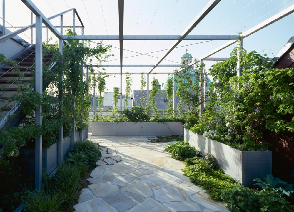 kebun sinar matahari
