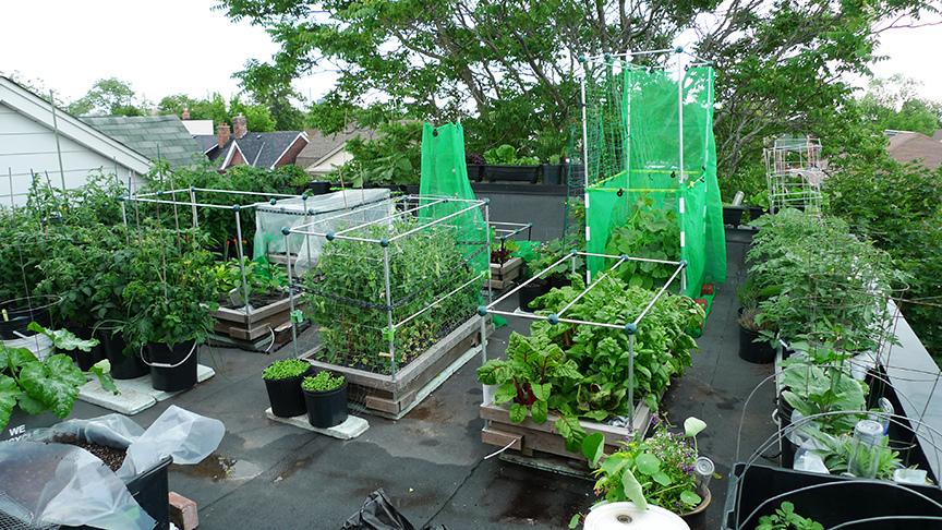 Kantong Tanaman Kebun
