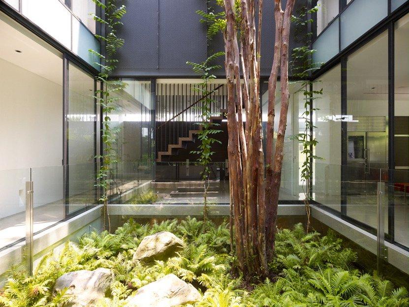 Ingin Punya Taman Minimalis Di Dalam Rumah Ini 9 Hal Yang Harus