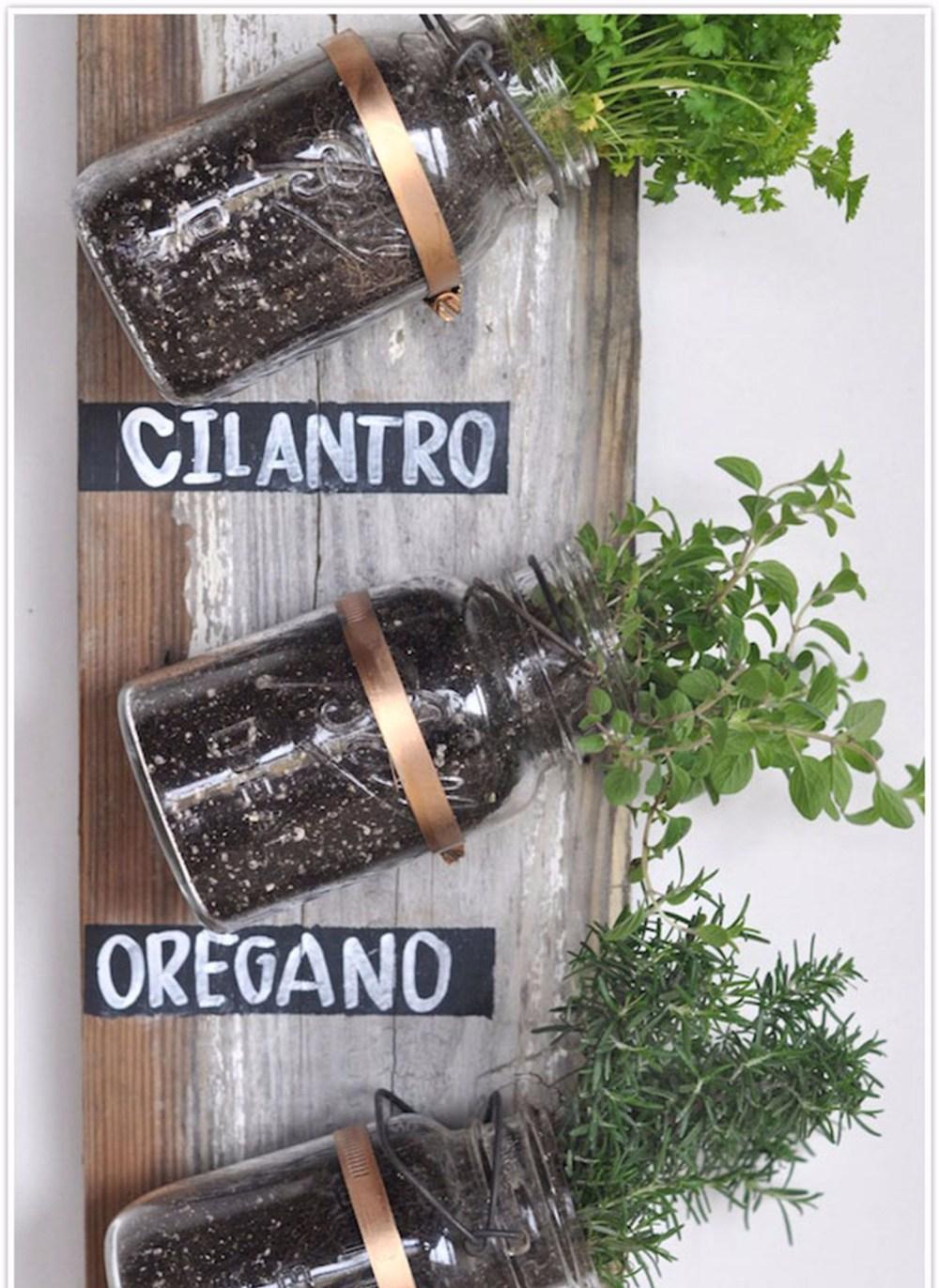 Kebun sayur khusus bumbu dapur