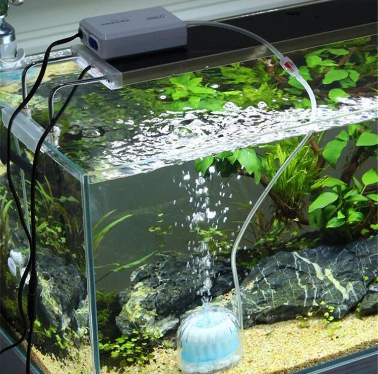 Akuarium Ikan Fliter
