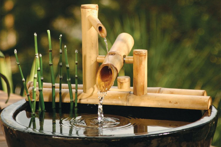 Bambu air sebagai tanaman depan rumah menurut feng shui