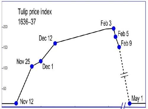 tulip_price_crash