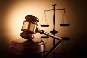 CONTROL JUDICIAL DE LAS OPOSICIONES : LA DISCRECIONALIDAD