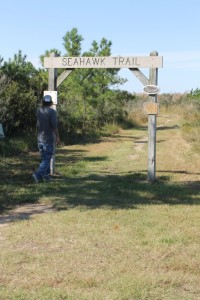 hiking in delaware, seahawk trail, holts landing, ellis point, indian river bay, old inlet, delaware state park, susssex county, ocean view