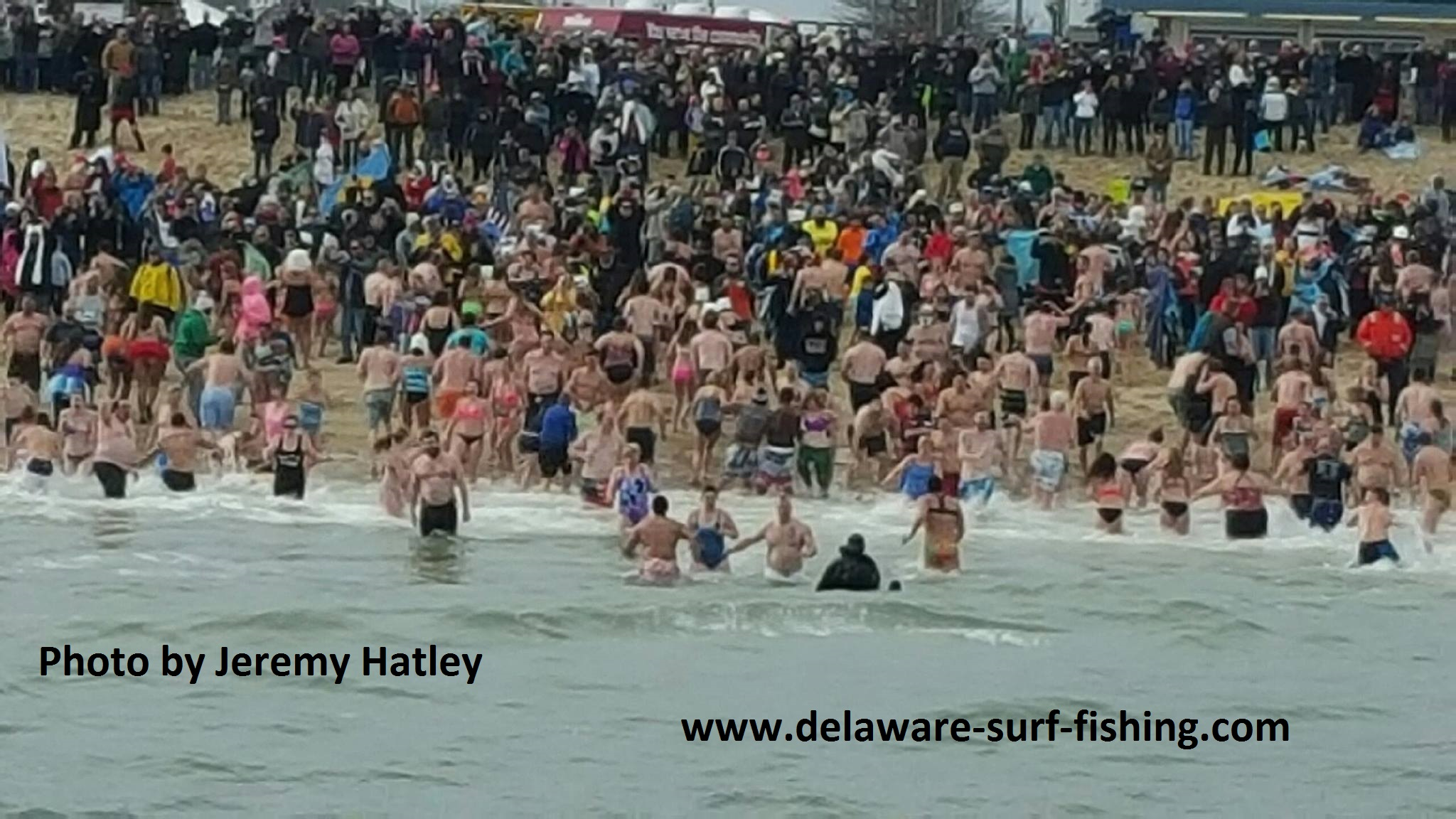 26th Annual Lewes Polar Bear Plunge To Benefit Special Olympics