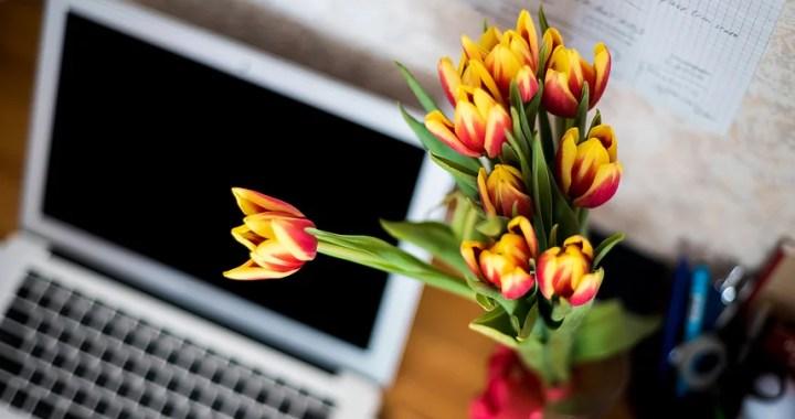 5 Ways to Grow Your Blog