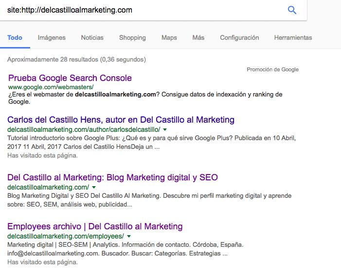 Páginas indexadas por Google de la web Del Castillo al Marketing