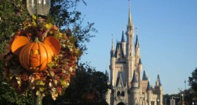 Travel Deals by Dana: Free Assistance Planning and Booking your Disney Trip or Disney Cruise