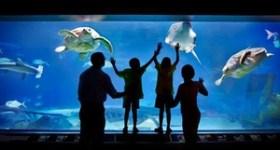 Two Tickets to Adventure Aquarium Camden for $32 (38% savings!)