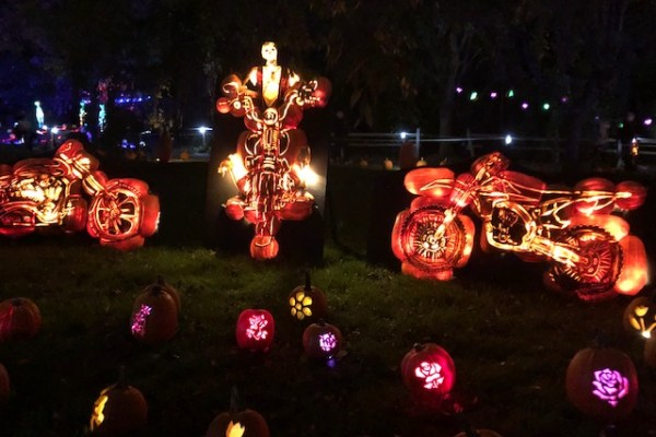 Set Your Halloween Bucket List Aglow with a Visit to Jack's Pumpkin Glow in Philadelphia