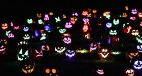 Experience the Delight of JACK'S PUMPKIN GLOW Philadelphia 10/5/19 -11/3/19 {& a Discount Code}