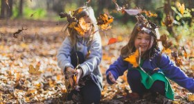 Fun Things to Do in Delaware County PA and Surrounding Areas this Weekend 11/13 – 11/15