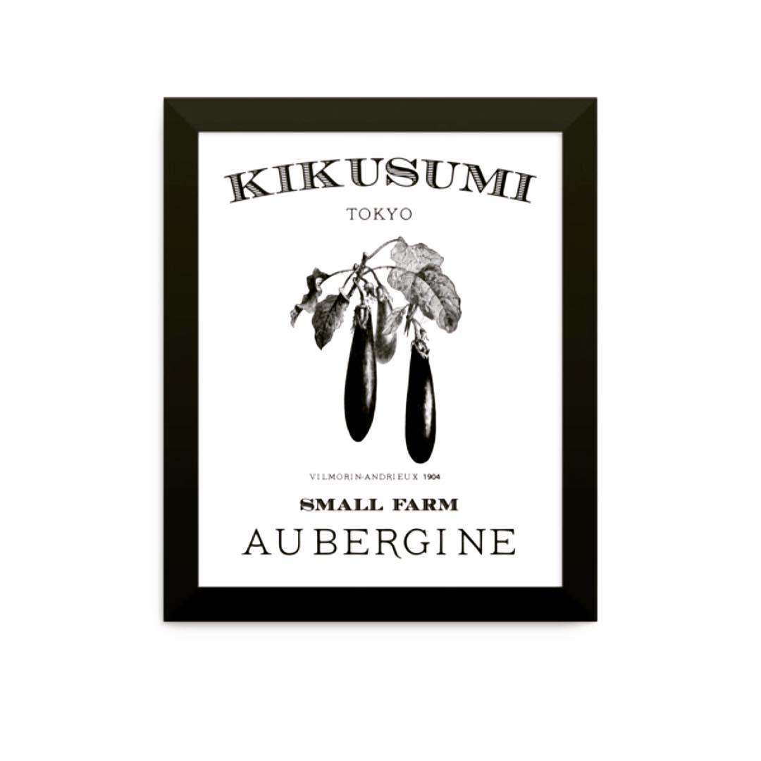 AUBERGINE  EGGPLANT KIKUSUMI presents s a special series ofhellip
