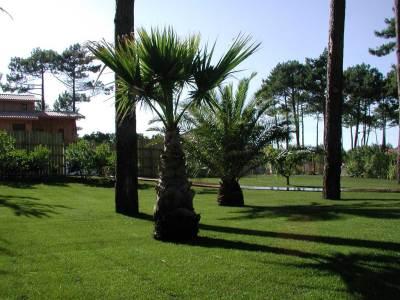 Aménagement de jardin sur le Bassin d'Arcachon