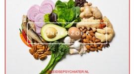 Voeding en het brein