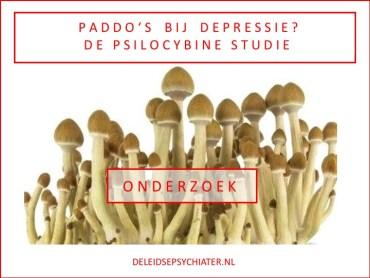 Paddo's als behandeling voor depressie?