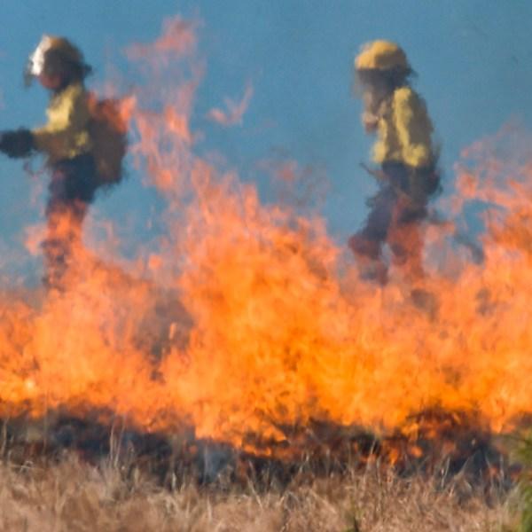 Máster en Intervenciones en Incendios Forestales y Quemas Prescritas a distancia
