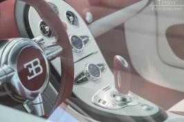 xzibit-bringing-a-bugatti-veyron-to-gumball-3000-2014_3