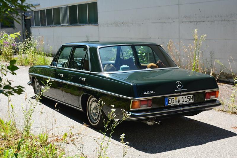 DLEDMV - Mercedes W115 Bagged Magdalena #2 - 01