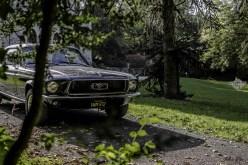 DLEDMV - Mustang 67 Julien F - 06