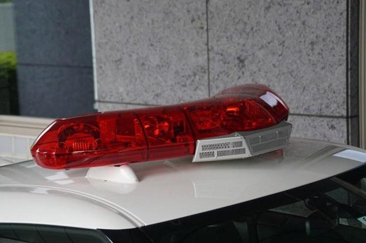 DLEDMV 2K18 - Nissan GTR Police Tochigi - 15