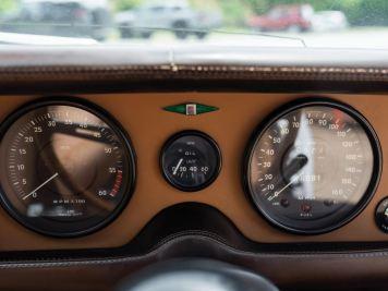 DLEDMV 2K19 - Jaguar Pirana - 019
