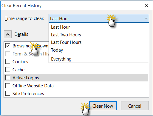 Delete your browser history step 3 in firefox