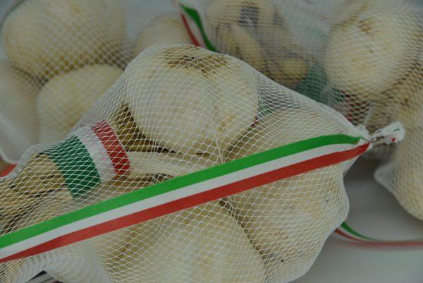 Treccia di Aglio Bianco Italiano