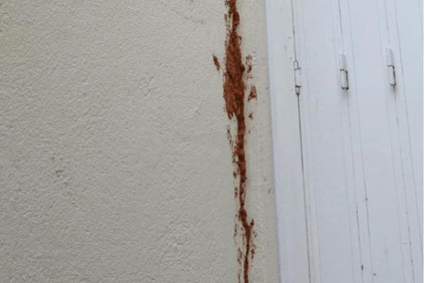 réparer une fissure dans un mur exterieur Seine-Saint-Denis