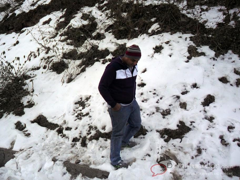 Snow clad fagu