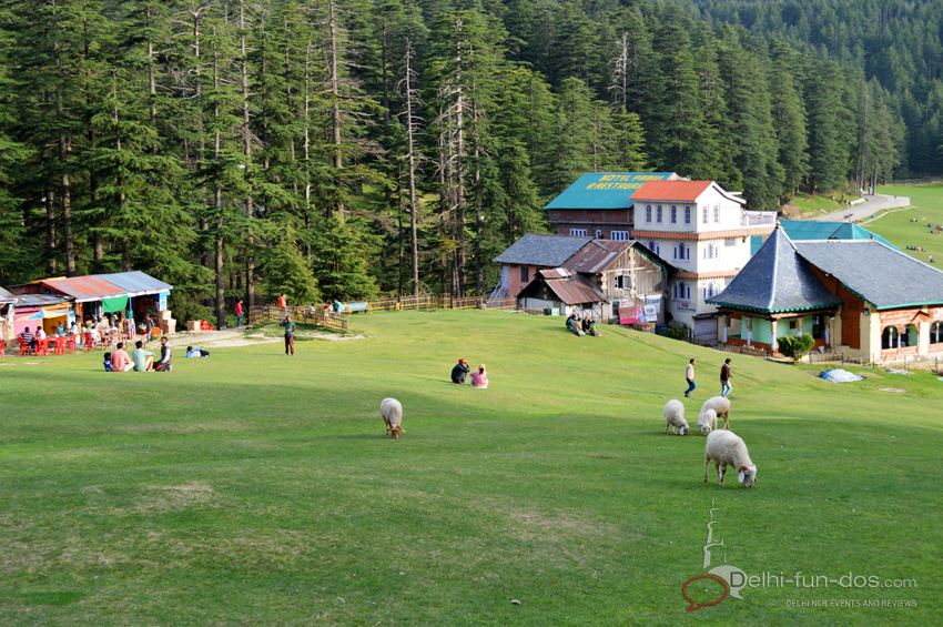 Beautiful meadow at Khajjiar. No wonder, it is called 'Mini Switzerland'.