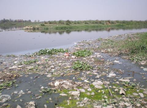 River Yamuna Delhi