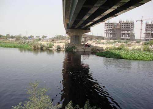 Green Blue Options for the Dead Delhi River