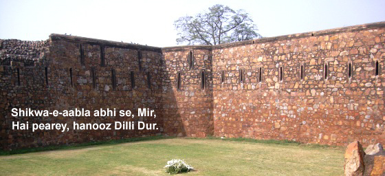 Discover Delhi: A Series of Excursions to the City of Cities!