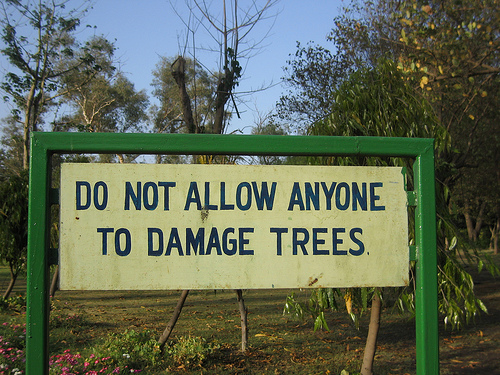 do-not-damange-trees