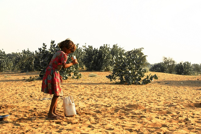 fighting-desertification-for-the-present-and-future-generations