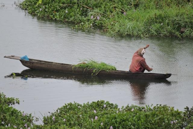 fishing-in-loktak-lake-manipur