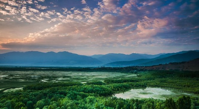 Top Ten Wetlands in India You Must Put on Your Travel Bucket List