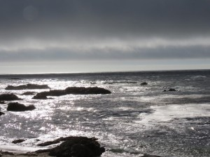 17 mile drive - Pebble beach