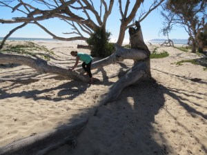 Pismo Beach campground beach
