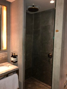 The Best Lounge in the World - Shower room