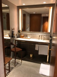 The Best Lounge in the World - Shower room set up