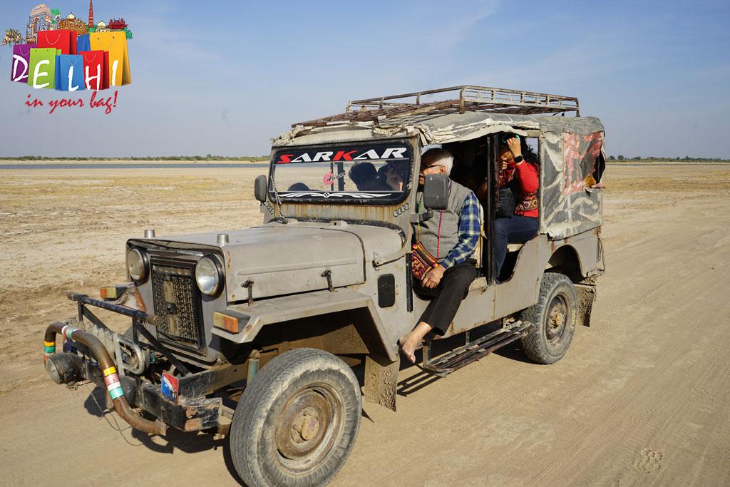 Little Rann Jeep Safari
