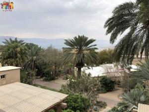 Ein Gedi Kibbutz look out