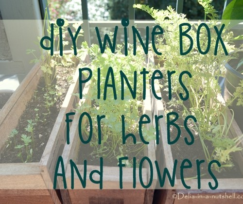 Wine box planters for herbs and flowers- DIY project
